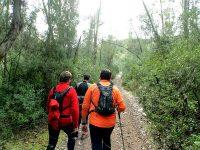 Rutas guiadas de senderismo en Córdoba