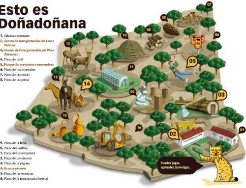 Granja escuela en Doñana, Huelva (infantil de 2 a 6 años)