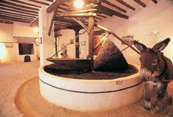 Museo Hacienda la Laguna