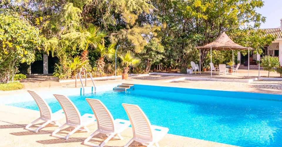Alojamiento con gran piscina y rodeada de árboles